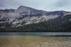 Kayaker que se bate en el lago Tenaya, parque nacional de Yosemite Imagen de archivo