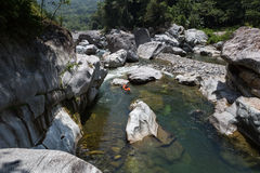 Kayaker sul fiume cangrejal nel hond del parco nazionale della sarda di pico Fotografia Stock Libera da Diritti