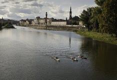 Kayakers στον ποταμό Arno στη Φλωρεντία Στοκ εικόνα με δικαίωμα ελεύθερης χρήσης