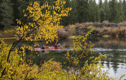 Kayakers на ясном озере Стоковая Фотография