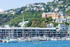 Kayakers appréciant un jour d'étés sur les eaux de Wellington Harbour Photo stock