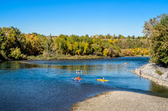 Kayakers on Bow River Royalty Free Stock Photo