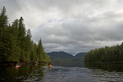 Kayakers die in kalm water op bewolkte dag paddelen Royalty-vrije Stock Foto's
