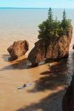 Kayakers em rochas de Hopewell Imagens de Stock