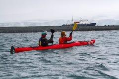 Kayakers en la Antártida con la nave, el glaciar y la orilla turísticos con los sellos de elefante jovenes en el fondo Fotos de archivo libres de regalías