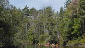 Kayakers no rio fotos de stock