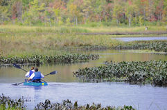 Kayakers no rio Fotografia de Stock
