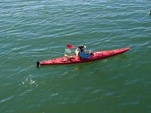 Kayakers Royalty Free Stock Photo
