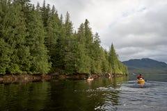 Kayakers que remam na água calma perto da costa arborizado Foto de Stock Royalty Free