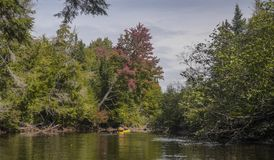 Kayakers on river royalty free stock photo
