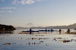 Kayakers silhouetted светом утра Стоковые Изображения