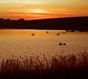 Kayakers at Sunset on a Lake. Three people in kayaks on a lake at sunset Royalty Free Stock Image