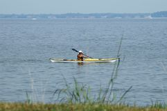 Kayaking. Man in a single Kayak viewed through grassy swamp land in Chesapeake Bay, Maryland Stock Image