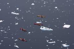 Kayaking in Antarktik Lizenzfreie Stockfotos