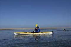 Kayaking around Pelican Point Royalty Free Stock Photo