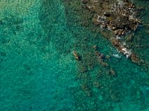 Kayaking in the beautiful teal ocean water royalty free stock photo