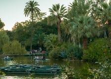 Kayaking bij zonsondergang in Barcelona royalty-vrije stock fotografie