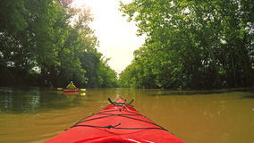 Kayaking on a creek stock footage