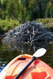 Kayaking dans l'automne tôt Photo libre de droits