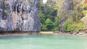 Kayaking in de mangrovebos van Thailand op eiland royalty-vrije stock afbeelding