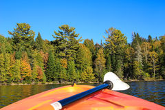 Kayaking in early Fall in Canada Stock Image