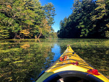 Kayaking en automne Image stock