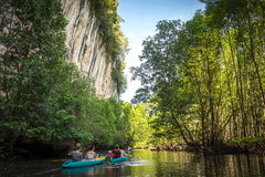 Kayaking in krabi 2. Kayak group at krabi - thailand Royalty Free Stock Photography