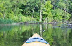 Kayaking by Krutynia river in Poland Stock Image