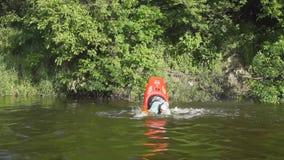 Kayaking man having fun in a river stock footage