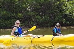 Kayaking in the Mangroves in Florida Stock Photo