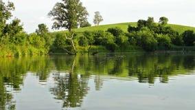 Kayaking na jeziorze zbiory wideo