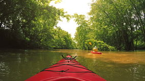 Kayaking na zatoczce zbiory
