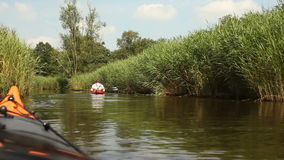 Kayaking in nature stock video footage