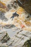 Kayaking nel fiume Findhorn. Immagini Stock Libere da Diritti