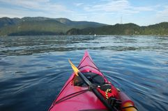 Kayaking nella baia profonda Immagini Stock Libere da Diritti