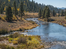 Kayaking no Truckee River Fotografia de Stock Royalty Free