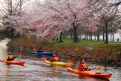 Kayaking op een de Lentedag stock afbeeldingen