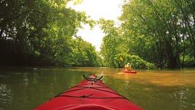 Kayaking op een kreek stock footage