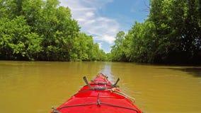 Kayaking op een kreek stock videobeelden