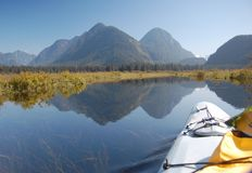 Kayaking in the Pitt Lake marsh. Kayak trip on Pitt Lake - Widgeon Creek in July 2012 Stock Photography