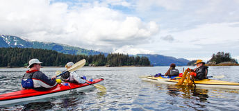 Kayaking pour la baie Alaska de Kachemak de déjeuner Photo libre de droits