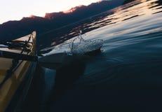 Kayaking samotnie na spokój wodzie z górami w tle podczas gdy zmierzch Obrazy Royalty Free
