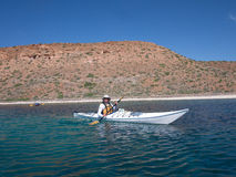 Kayaking on the sea of cortez,Mexico Royalty Free Stock Photo