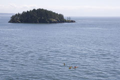 Kayaking at Sea Royalty Free Stock Photos