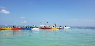 The florida keys kayaking royalty free stock photo