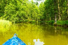 Kayaking by wild river in poland (Omulew river). Kayaking by wild river in forest in poland (Omulew river near Nidzica). Summer recreation stock images