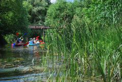 kayaks природа отдыха производительная Стоковое Фото