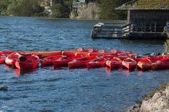 Kayaks amarrés au bord de l'eau Photo stock