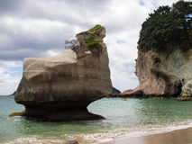 Cathedral Cove @ Coromandel, New Zealand Royalty Free Stock Photos