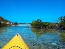 Kayaks et palétuviers Photographie stock libre de droits